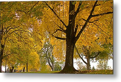 Autumn Memories Metal Print by Beverly Guilliams