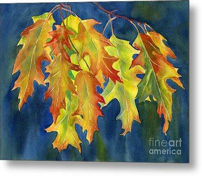 Autumn Oak Leaves  On Dark Blue Background Metal Print by Sharon Freeman