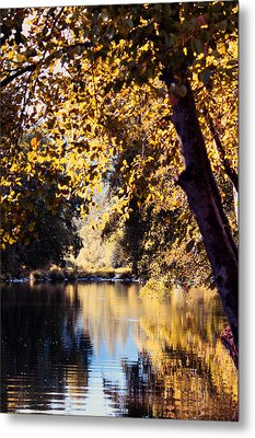Autumn On The Applegate Metal Print by Melanie Lankford Photography
