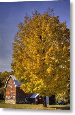 Autumn On The Farm Metal Print by Thomas Young
