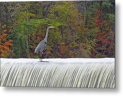 Autumn On The Maumee Metal Print by Cathy Cooley