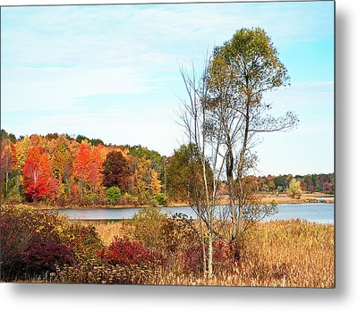 Autumn Pond Metal Print by Aimee L Maher Photography and Art Visit ALMGallerydotcom
