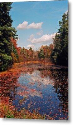 Autumn Reflections Metal Print by Joann Vitali