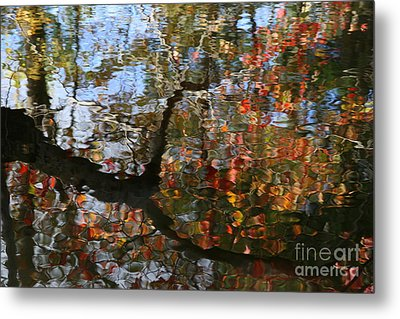 Autumn Reflections  Metal Print by Neal  Eslinger