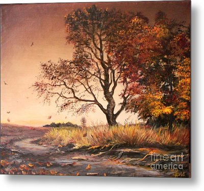 Autumn Simphony In France  Metal Print by Sorin Apostolescu