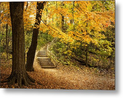 Autumn Stairs Metal Print by Scott Norris