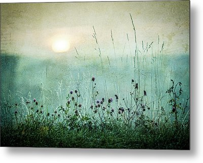 Autumn Sunrise Metal Print by ?smund Kv?rnstr?m