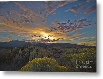 Autumn Sunset Metal Print by Dianne Phelps