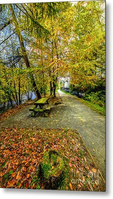 Autumn Way Metal Print by Adrian Evans