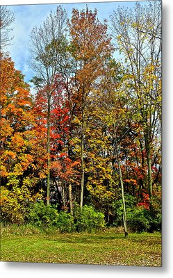Autumnal Foliage Metal Print by Frozen in Time Fine Art Photography