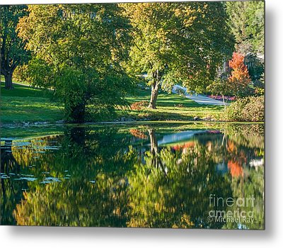 Autumns Beauty Metal Print by Optical Playground By MP Ray