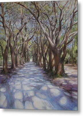 Avenue Of The Oaks Metal Print by Henry David Potwin