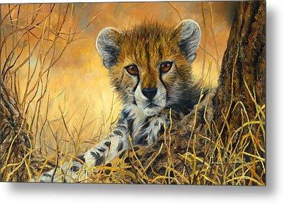 Baby Cheetah  Metal Print by Lucie Bilodeau