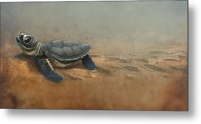 Baby Turtle Metal Print by Aaron Blaise