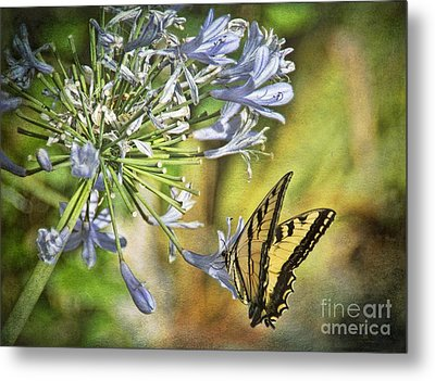 Backyard Nature Metal Print by Peggy Hughes