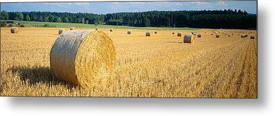 Bales Of Hay Southern Germany Metal Print by Panoramic Images