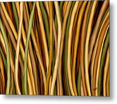 Bamboo Canes Metal Print by Brenda Bryant
