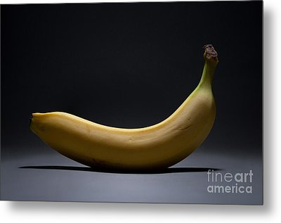 Banana In Limbo Metal Print by Dan Holm