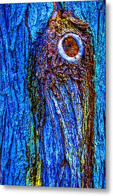 Bark Blues 2 Metal Print by Brian Stevens