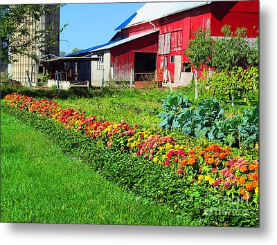 Barn And Garden Metal Print by Tina M Wenger
