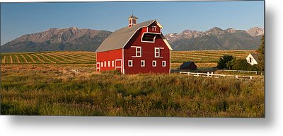 Barn In A Field With A Wallowa Metal Print by Panoramic Images