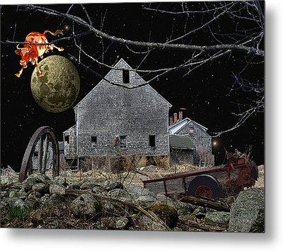 Barnyard Games Metal Print by Donna Lee Young