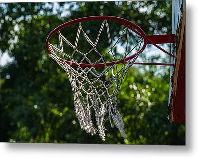Basket - Featured 3 Metal Print by Alexander Senin