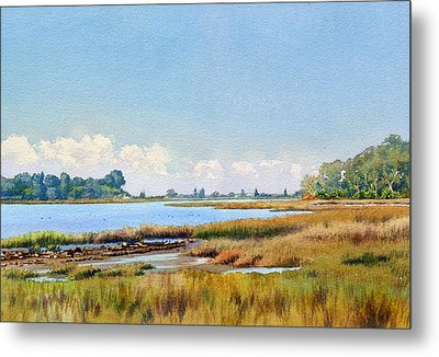 Batiquitos Lagoon Marshland Metal Print by Mary Helmreich