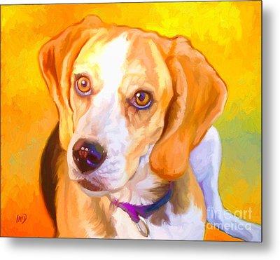 Beagle Dog Art Metal Print by Iain McDonald
