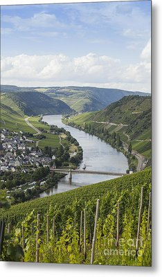 Beautiful Mosel River Metal Print by Patricia Hofmeester