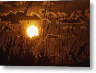 Beautiful Sunset View Metal Print by Retro Images Archive