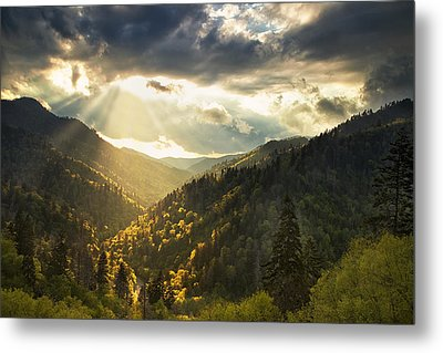 Beauty After The Storm Metal Print by Andrew Soundarajan