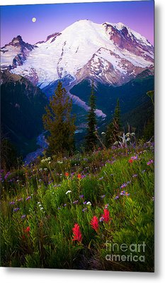 Before Dawn At Mount Rainier Metal Print by Inge Johnsson