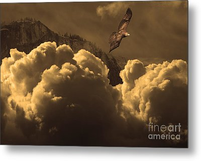 Before Memory . I Have Soared With The Hawk Metal Print by Wingsdomain Art and Photography