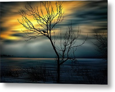 Beginnings Metal Print by Gary Smith
