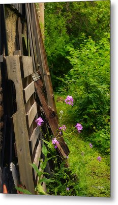 Behind The Old Shed Metal Print by Mary Machare