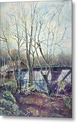 Behind The Shed Metal Print by Janet Felts