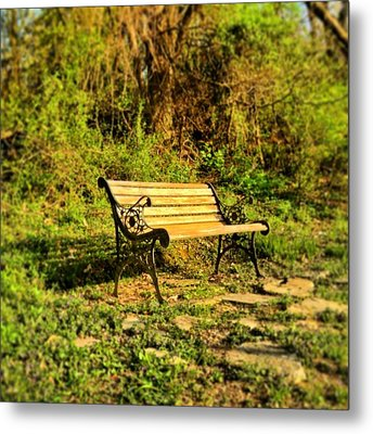 Bench At The Pond  Metal Print by Andrew Martin
