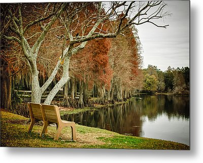 Bench With A View Metal Print by Carolyn Marshall