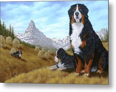 Bernese Mountain Dog Metal Print by Rick Bainbridge