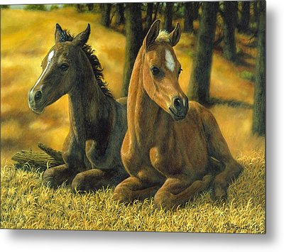 Best Friends Metal Print by Crista Forest