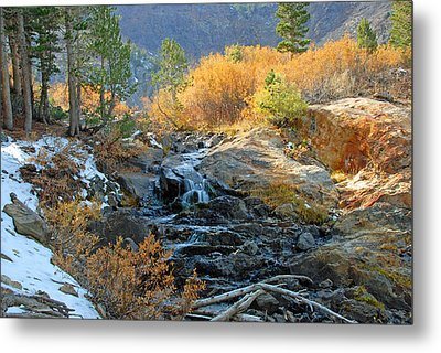 Between The Virginias Metal Print by Lynn Bauer