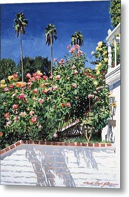 Beverly Hills Roses Metal Print by David Lloyd Glover