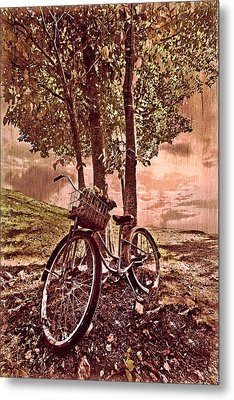 Bicycle In The Park Metal Print by Debra and Dave Vanderlaan