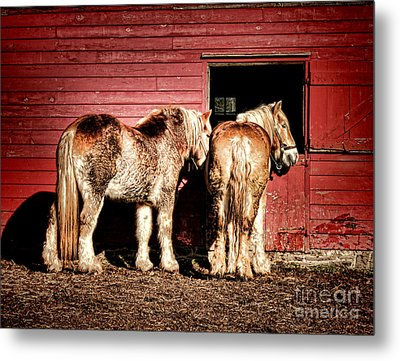 Big Horses Metal Print by Olivier Le Queinec