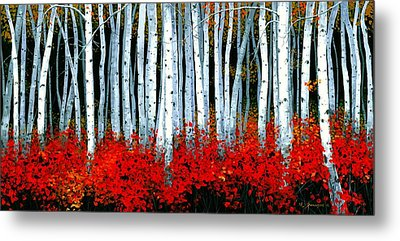 Birch 24 X 48  Metal Print by Michael Swanson