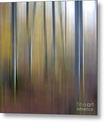 Birch Trees. Abstract. Blurred Metal Print by Bernard Jaubert