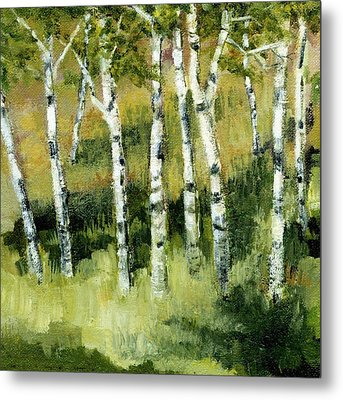 Birches On A Hill Metal Print by Michelle Calkins