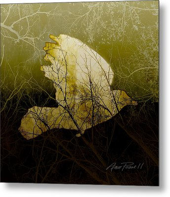 Bird IIi Metal Print by Ann Powell