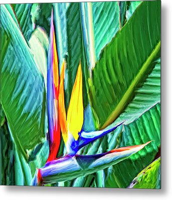 Bird Of Paradise Metal Print by Dominic Piperata